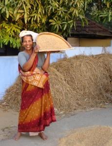 A rice winnower