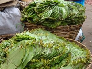 Betel leaves, Munnar market