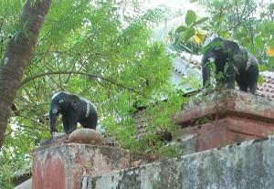 Elephants on Gatepost