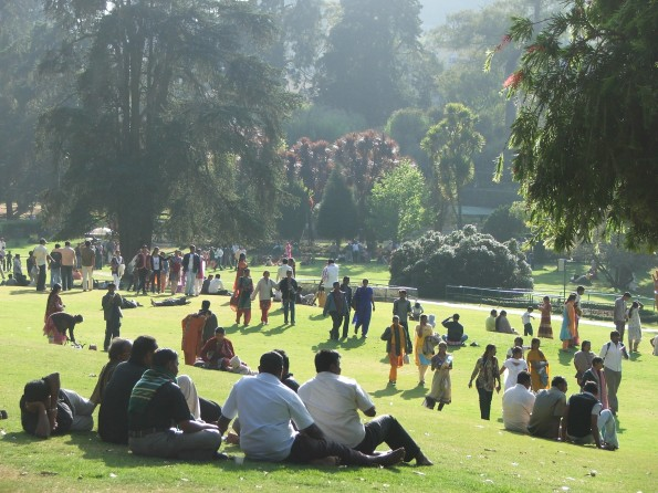 Botanic Gardens at Ooty - now warm enough for crows.