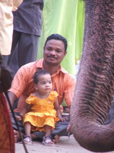 Father and daughter watching elephants